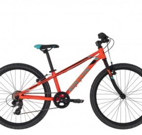 Bicicletta Mountain Bike per Ragazzi Freni V-Brake 24 Pollici